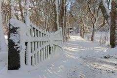 打开门和树一个多雪的胡同每冬日 免版税图库摄影