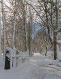 打开门和树一个多雪的胡同每冬日 库存图片