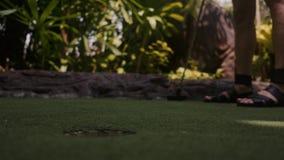 打微型高尔夫球的年轻女人 在框架的腿 中间射击 在孔的射击球 股票录像