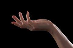 打手势一个女孩的美好的手,棕榈开放 免版税库存照片