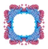 打旋多彩多姿的墨水的下落在水中,创造一个有机形式 免版税库存图片