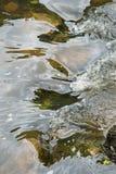 打旋,一条快速流动的河的反射性表面 库存图片