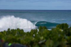打破在浅珊瑚礁的危险波浪在夏威夷 库存图片