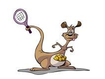 打网球的袋鼠 库存例证