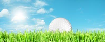 打高尔夫球作用s时间 免版税库存图片