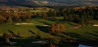打高尔夫球手段 免版税库存图片