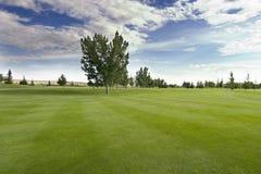 打高尔夫球萨斯喀彻温省 免版税库存图片