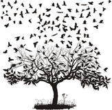 打鸣结构树 免版税图库摄影