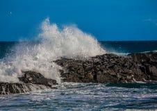 打破在印度洋的岩石的波浪在狂放的海岸  库存图片