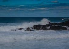 打破在印度洋的岩石的波浪在狂放的海岸  图库摄影