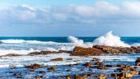 打破在好望角岩石岸的大西洋的波浪  免版税图库摄影