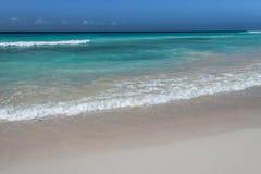 打破在岸上的波浪在巴巴多斯 免版税库存照片
