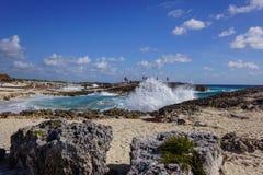 打破在岸的海浪 库存照片
