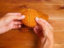 打破麦甜饼的妇女的手 库存照片