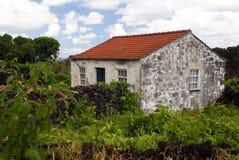 扔石头的房子老 免版税库存图片