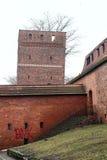 托伦中世纪倾斜的防御塔在白色天空的 免版税图库摄影