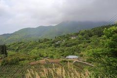 托儿所yangmingshan (yangming的山),台北 免版税库存图片