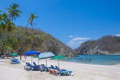 托尔蒂岛海岛,哥斯达黎加 库存图片