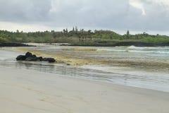 托尔蒂岛海湾冲浪的海滩  免版税库存照片