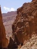 托德拉的河在摩洛哥狼吞虎咽 免版税库存图片