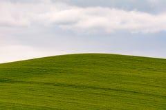 托斯卡纳小山在Val d& x27; Orcia 免版税库存照片
