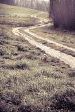 托斯卡纳弯曲道路-被定调子的图象 免版税库存照片