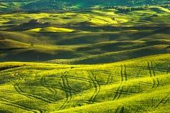 托斯卡纳春天,日落的绵延山 沃尔泰拉农村大局 免版税库存照片