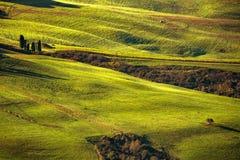 托斯卡纳春天,绵延山早晨 农村的横向 g 免版税库存图片