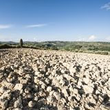 托斯卡纳的Plowed倾斜的小山 免版税图库摄影