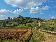 托斯卡纳葡萄园,意大利 免版税库存图片