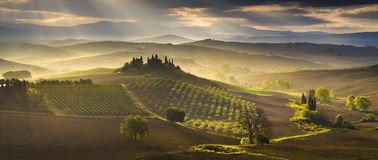 托斯卡纳风景,秋天领域,意大利, Val, D, Orcia 免版税库存图片