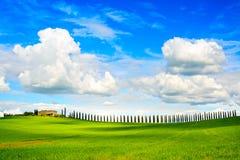 托斯卡纳,农田,柏树荡桨并且调遣。锡耶纳, Val d Orc 库存照片