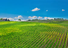 托斯卡纳,意大利农村风景 库存照片