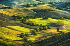 托斯卡纳,日落的绵延山 农村的横向 绿色f 库存照片