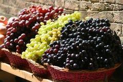 托斯坎的葡萄 免版税库存照片