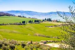 托斯坎风景,观点的绿色Val D'Orcia 库存图片