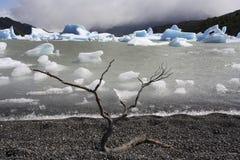 托里斯del潘恩国家公园-巴塔哥尼亚-智利 库存图片
