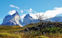 托里斯del潘恩国家公园W艰苦跋涉 库存照片