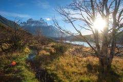 托里斯del潘恩Nationalpark,智利 免版税图库摄影