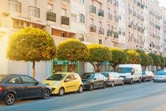 托雷莫利诺斯角,西班牙- 2014年2月13日:一条典型的路街道w 免版税库存图片