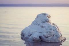 托雷维耶哈,巴伦西亚,西班牙盐湖  免版税库存照片