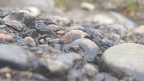 执行下来有岩石那里什么 库存图片