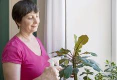 执行从事园艺的高级妇女 免版税库存照片