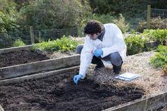 执行土壤分析 免版税库存照片