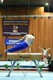 执行在鞍马的男性体操运动员 免版税库存图片