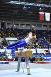 执行在鞍马的男性体操运动员 库存图片