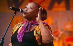 执行在音乐会的歌唱家在南非 图库摄影