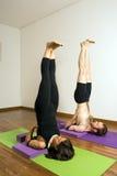 执行垂直的女子瑜伽的人 免版税库存照片