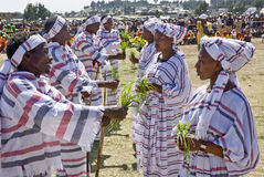执行妇女的埃赛俄比亚的人新 免版税图库摄影