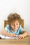 执行家庭作业 免版税库存照片